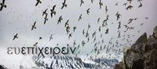 Δεν μπορείς να εμποδίσεις τα πουλιά της ανησυχίας να πετάνε πάνω από το κεφάλι σου, αλλά μπορείς να τα εμποδίσεις να φτιάξουν φωλιές στα μαλλιά σου - Κινέζικη παροιμία